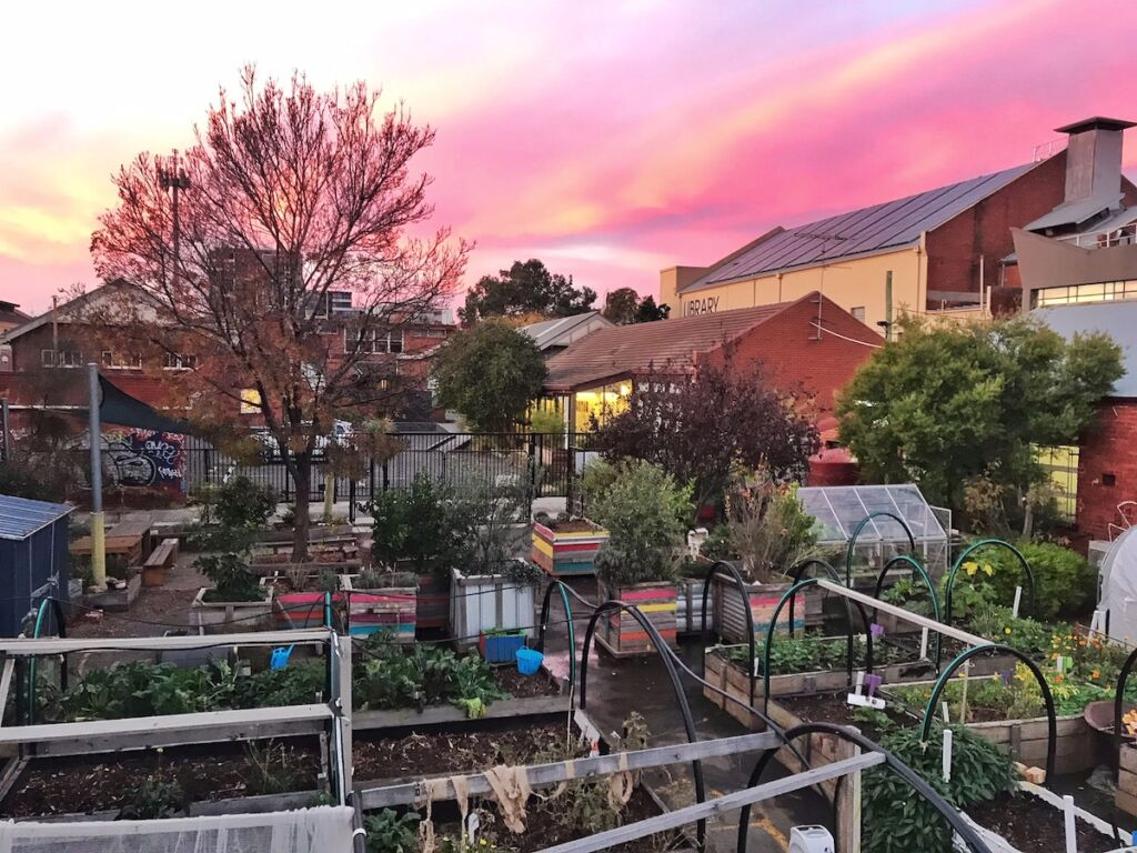 A permaculture garden with a pink sunset background