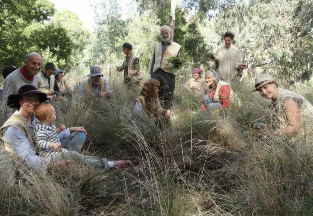 A group of people sit amongst grasses and shrubbery while weeding