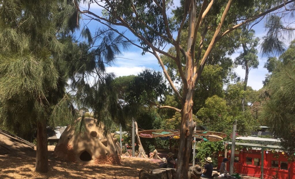 An area of CERES with part of the Terra Wonder playspace shown amongst gum and casurina trees