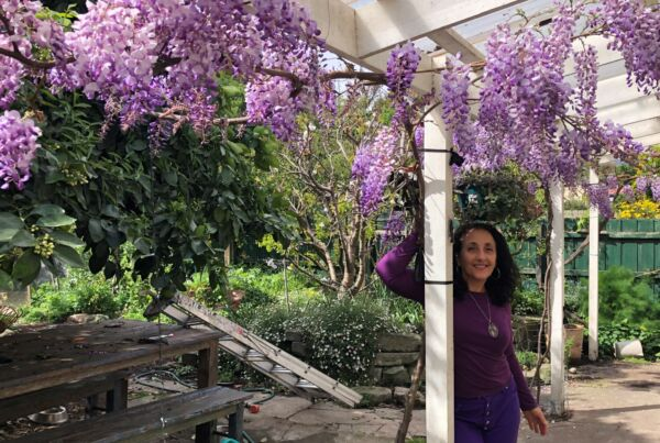 Women standing under a backyard pegola with purple wisteria
